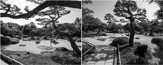 <div> <P>Single: Trees in Japanese garden</p> <p>IPA 2016 | INTERNATIONAL PHOTO AWARDS<br> -HONORABLE MENTIONS - NATURE/TREES (PROFESSIONAL)</p> </div>